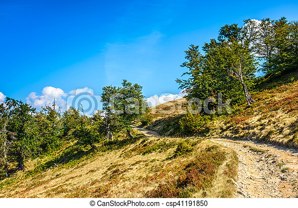 mountain path uphill to the sky - csp41191850