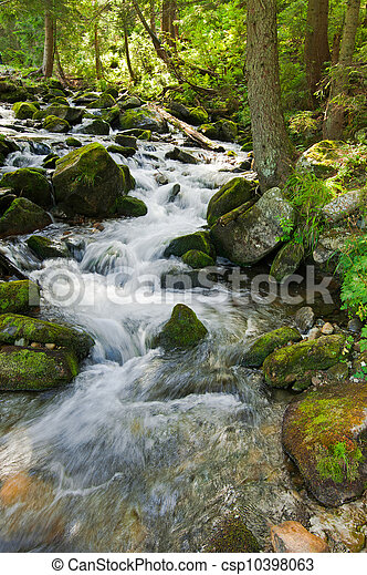 Mountain river flowing at summer forest landscape - csp10398063