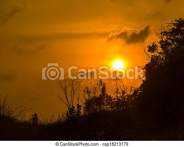 mountain silhouette with plants at sunset, India - csp18213179