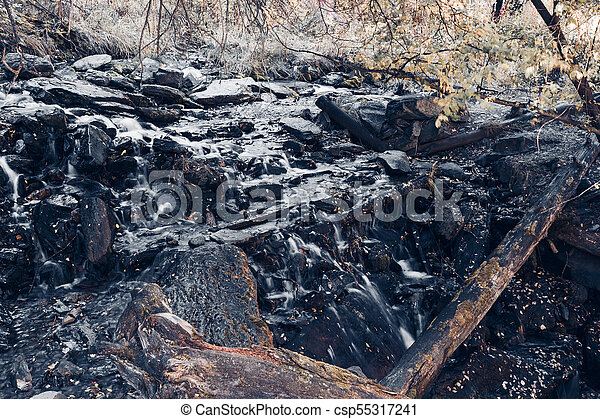 Mountain stream in the forest. Old trees and logs in the river with stone banks - csp55317241