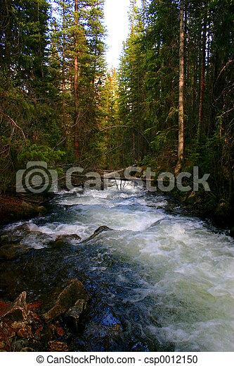 Mountain Stream - csp0012150