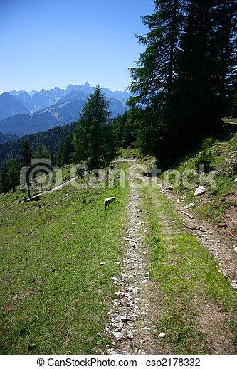 Mountain track - csp2178332