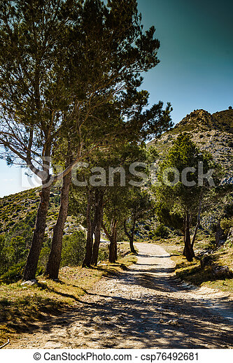 Mountain trail with green trees. - csp76492681