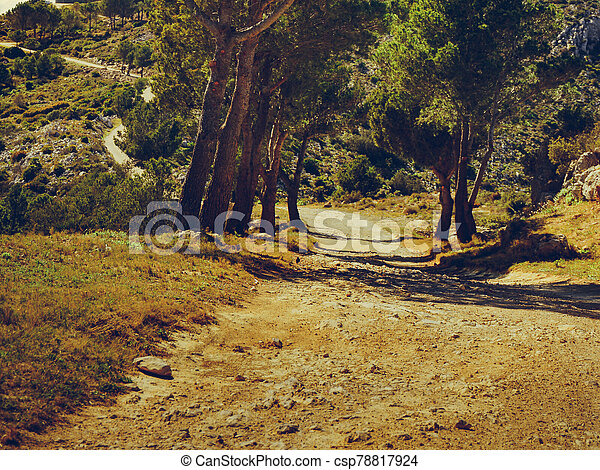 Mountain trail with green trees. - csp78817924