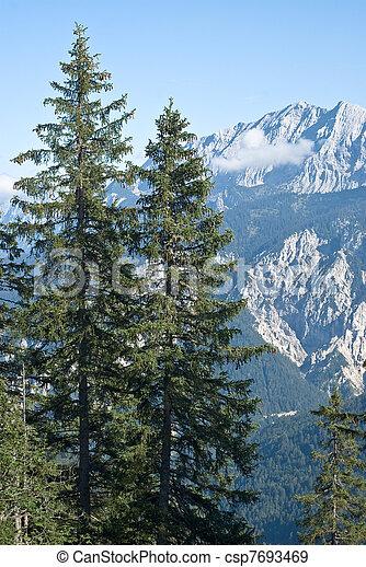 Mountain Vista - csp7693469