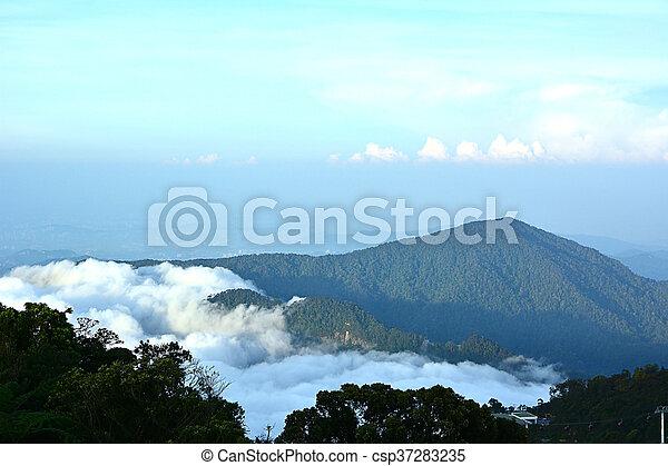 Mountain with mist - csp37283235