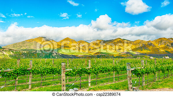 Mountains of New Zealand - csp22389074
