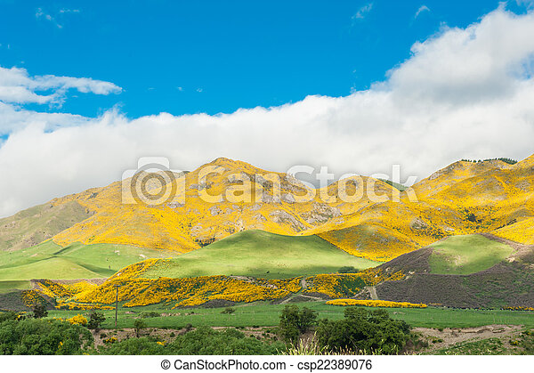 Mountains of New Zealand - csp22389076