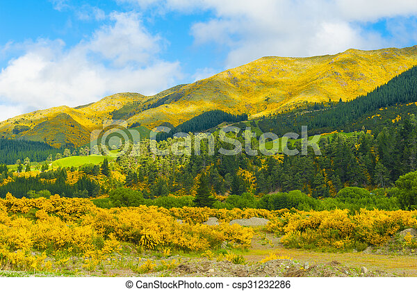 Mountains of New Zealand - csp31232286