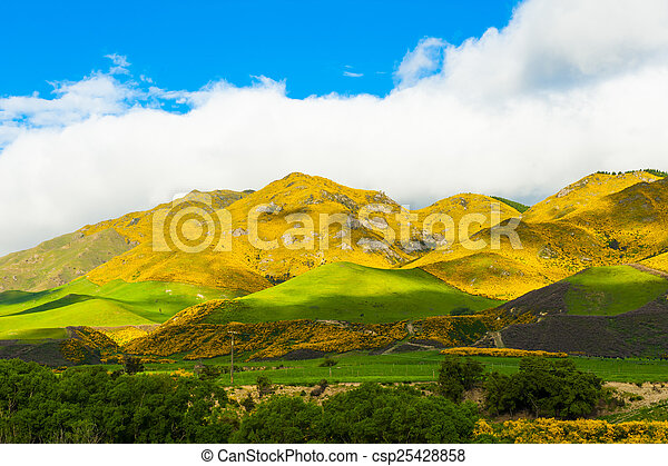 Mountains of New Zealand - csp25428858