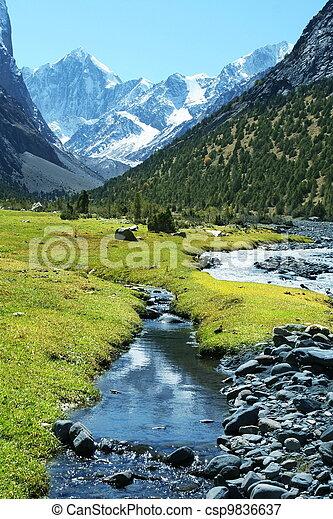 Mountains - csp9836637