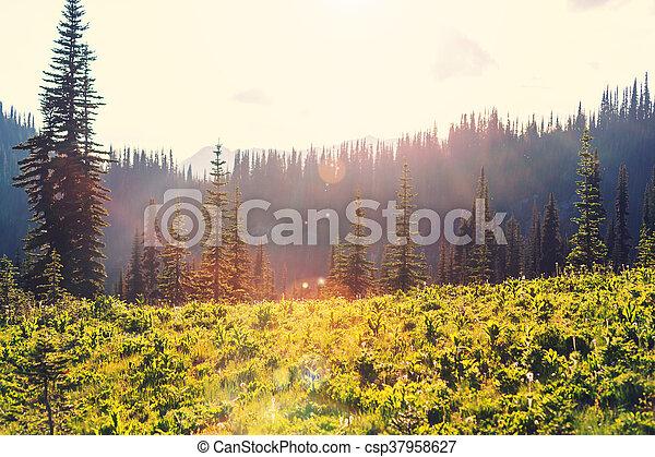 Mountains - csp37958627