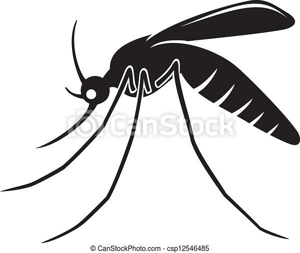 moustique - csp12546485
