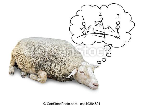 mouton, dénombrement, humains, dormir - csp10384891