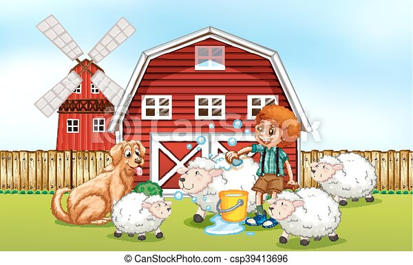 Mouton Garcon Donner Ferme Bain Mouton Garcon Donner Illustration Bain Ferme Canstock