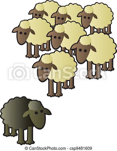 mouton, troupeau, noir - csp9481609