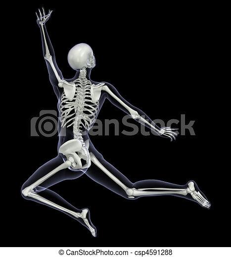 mouvement, femme, squelette, -, saut - csp4591288