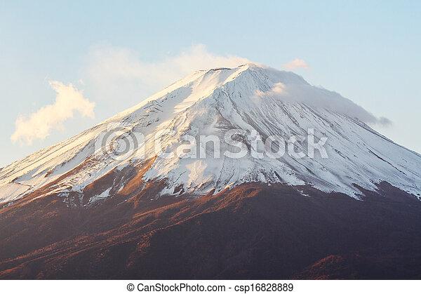Mt. Fuji - csp16828889