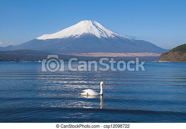 Mt Fuji - csp12098722