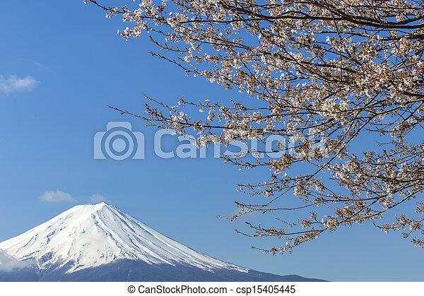 Mt Fuji - csp15405445