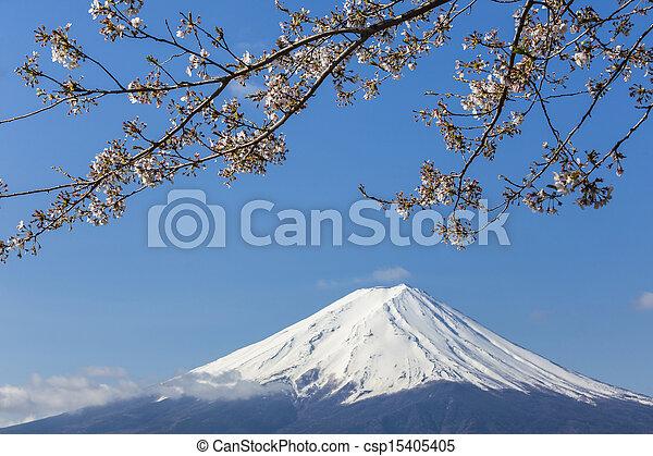 Mt Fuji - csp15405405