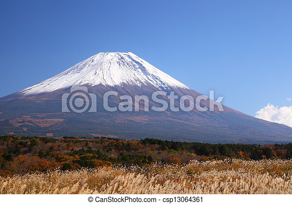 Mt. Fuji with Japanese silver grass - csp13064361