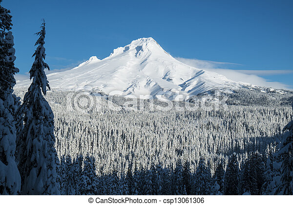 Mt. Hood, winter, Oregon - csp13061306
