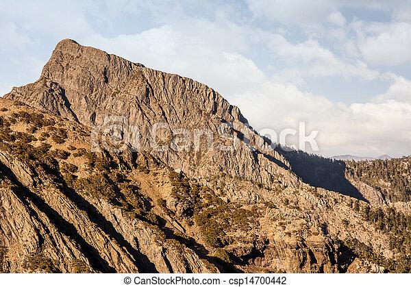 Monte jade del este - csp14700442