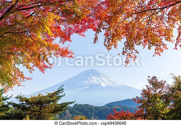 Mt.Fuji in autumn at Lake kawaguchiko - csp49436648