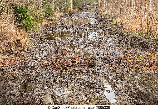 mud rutted road in the woods