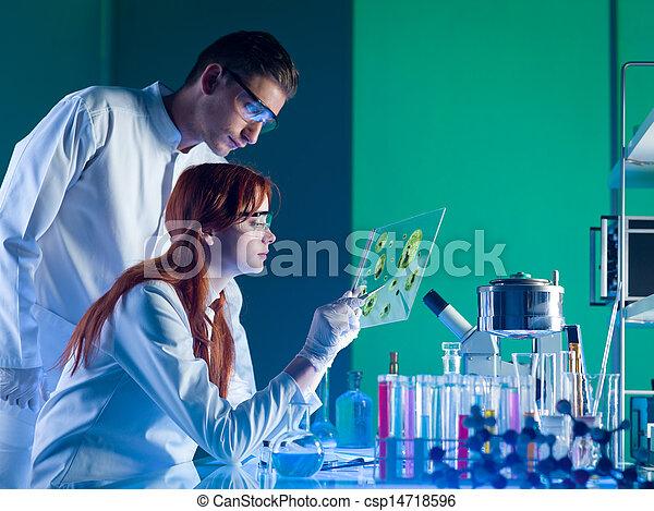 Científicos farmacéuticos estudiando una muestra - csp14718596