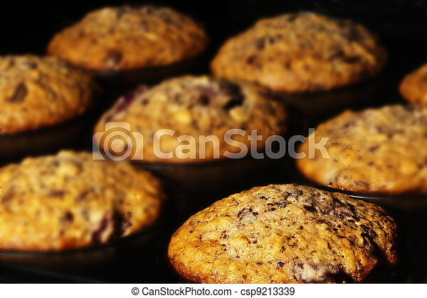 muffin in an oven - csp9213339