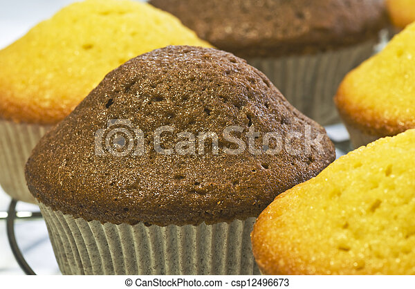 muffin - csp12496673