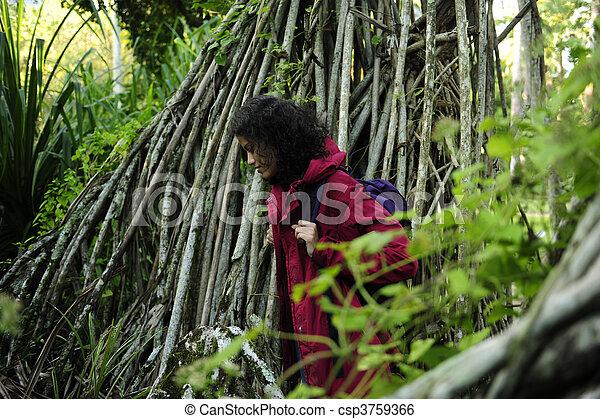 Ecotourismo: mujer caminando en el bosque - csp3759366