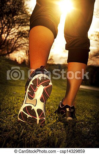 mujer, entrenamiento, corredor, salud, atleta, condición física, pies, corriente, primer plano, empujoncito, shoe., pasto o césped, concept., salida del sol - csp14329859