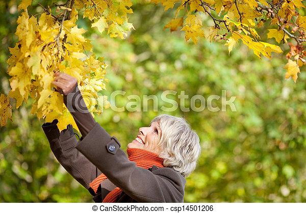 Mujer mayor sosteniendo rama de árbol - csp14501206