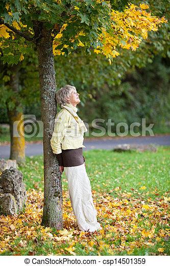 mujer, parque, propensión, árbol, otoño, tronco, 3º edad - csp14501359
