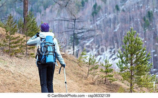 Una joven senderismo en el bosque. Turista con mochila y postes de trekking están en el bosque de primavera con su espalda a la cámara. - csp36332139