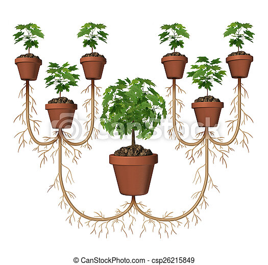 Multiplying profits and compound growth investing business diagram multiplying profits and compound growth investing business diagram concept as a tree in a planting pot expanding with a group of new saplings as a symbol ccuart Images