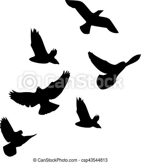 Flock of birds - csp43544813