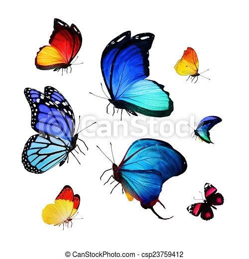 Flock de mariposas - csp23759412