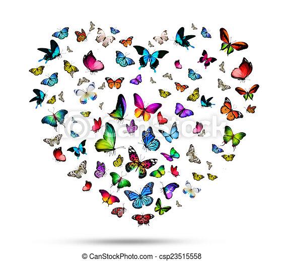 Flock de mariposas - csp23515558