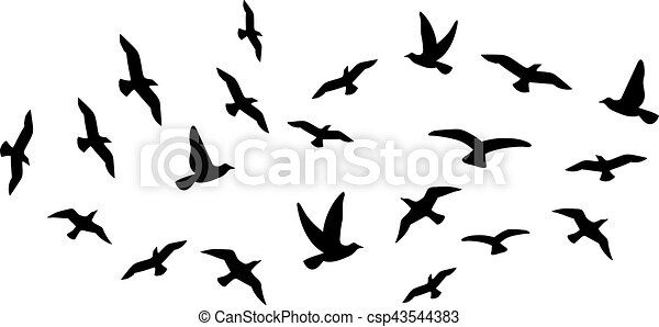 Flock de aves voladoras - csp43544383