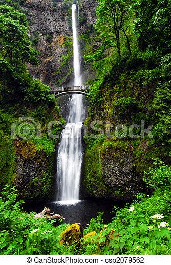 Multnomah cae en Oregon - csp2079562