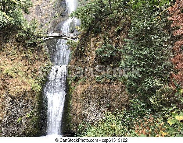 Multnomah cae en Oregon - csp61513122