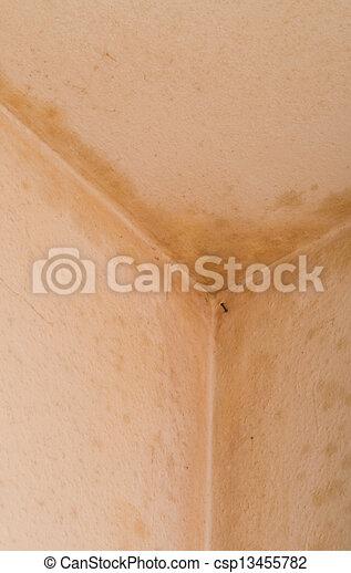 moisissures mur excellent great elegant stunning taches enduit chaux chanvre taches mur enduit. Black Bedroom Furniture Sets. Home Design Ideas