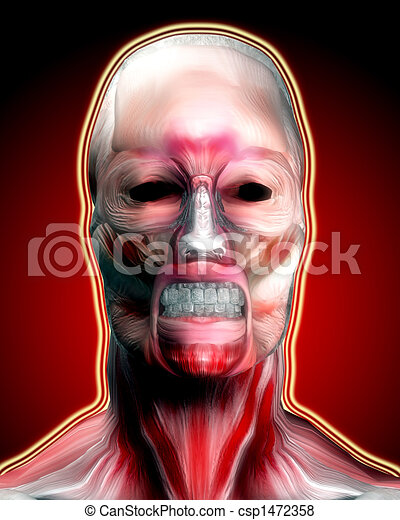 Muscle Face 4 - csp1472358