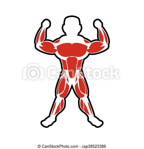 muscle man icon bodybuilder design vector graphic healthy rh canstockphoto com muscle man clip art transparent background muscle man clipart cartoon