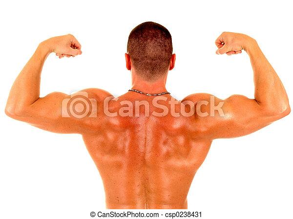 muscle man - csp0238431
