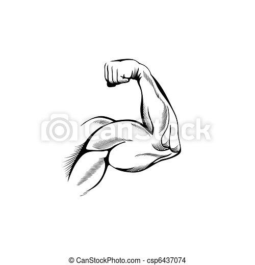 muscles, bras - csp6437074